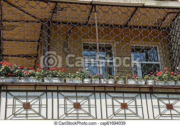 large balcony with iron grill with flowerpots and decorative flowers - csp61694039