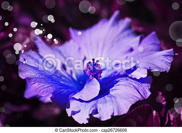 Large beautiful blue flower on pink background with color filters large beautiful blue flower on pink background with color filters spring flowers romantic backgrou mightylinksfo