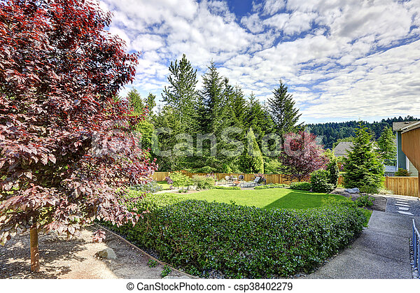 Large fenced backyard with patio - csp38402279