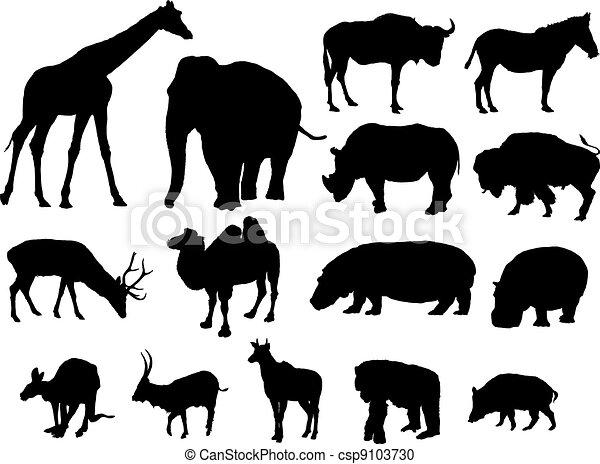 large herbivores - csp9103730