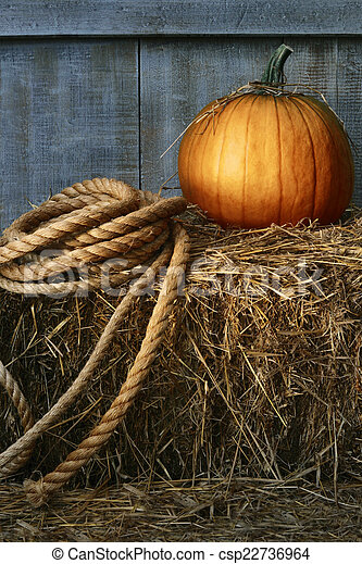 Large pumpkin with rope on hay - csp22736964