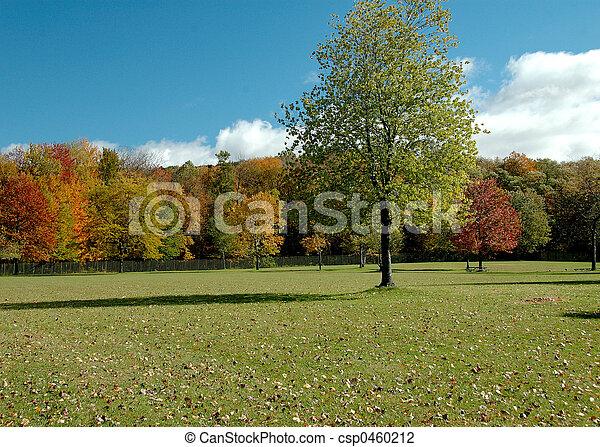 Last Green Tree - csp0460212