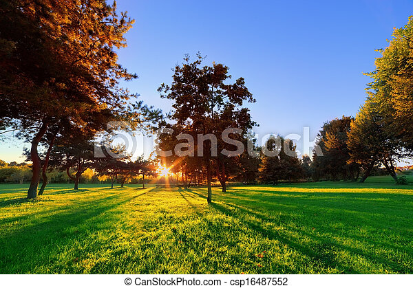 Late summer, autumn sunset in a park - csp16487552