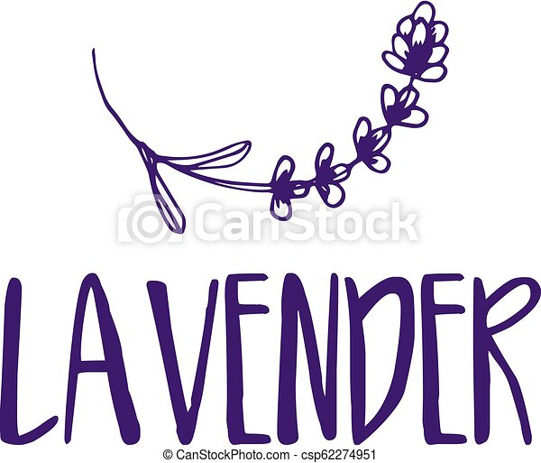 lavender., abstrakt, illustration, vektor, design, mall, logo, ikon - csp62274951