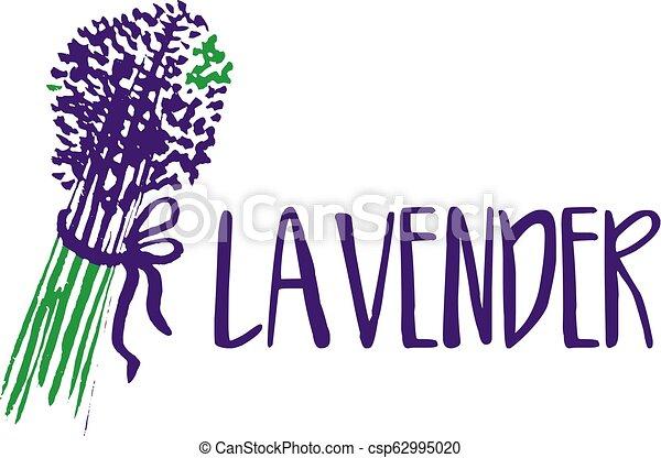 lavender., abstrakt, illustration, vektor, design, mall, logo, ikon - csp62995020