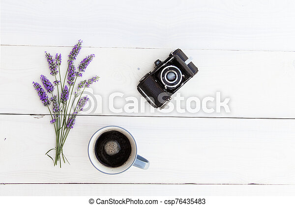 Lavender bushes closeup on sunset. Sunset gleam over purple flowers of lavender. Provence region of france - csp76435483