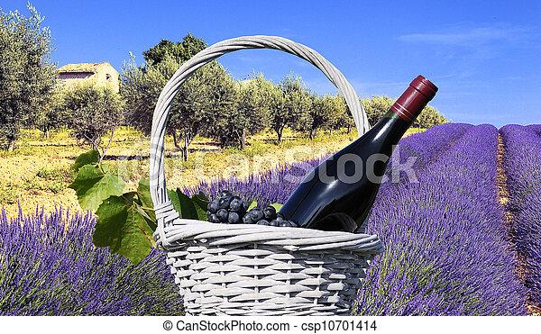 Lavender in the landscape - csp10701414