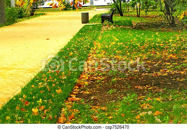 lawn in the park in autumn - csp7526470