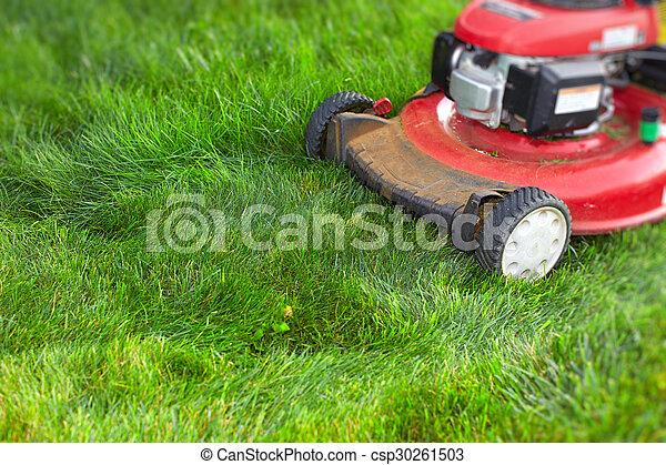 Lawn mower cutting green grass. - csp30261503