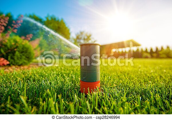 Lawn Sprinkler in Action - csp28246994