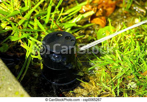 Lawn Sprinkler - csp0065267