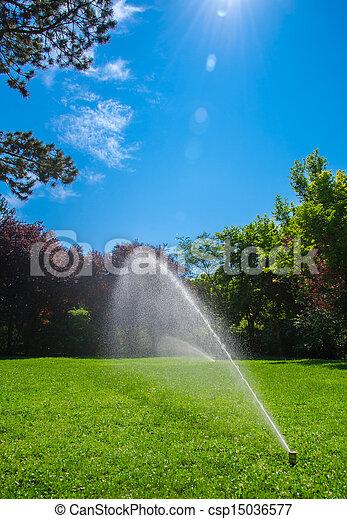 lawn sprinkler - csp15036577