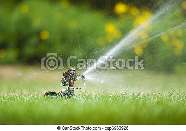 Lawn sprinkler - csp6963928