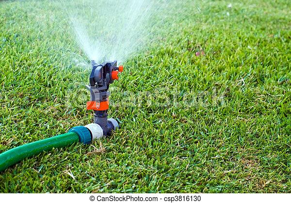 Lawn sprinkler - csp3816130