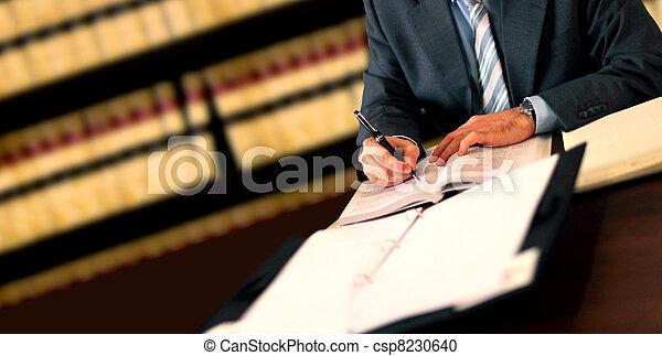 Lawyer - csp8230640