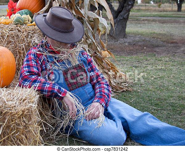 lazy scarecrow naps on the job. - csp7831242
