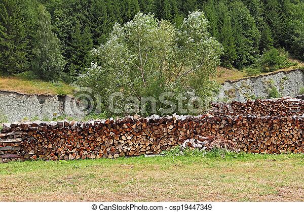 Una pila de leña apilada para secar en la pila de madera en el prado verde - csp19447349