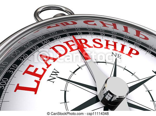 leadership conceptual compass - csp11114348