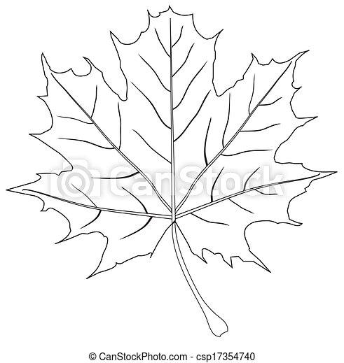 Leaf - csp17354740