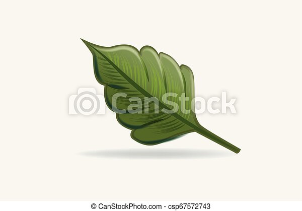 Leaf health nature logo vector - csp67572743