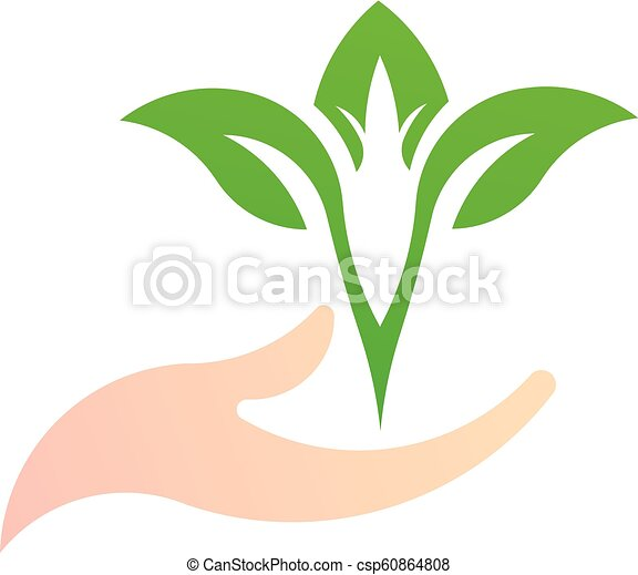 Leaf on the hand, green natural logo vector - csp60864808