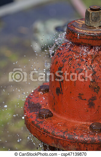 Leaking Fire Hydrant Spraying Water