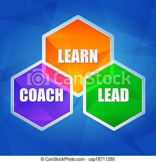learn, coach, lead in hexagons, flat design - csp18711280