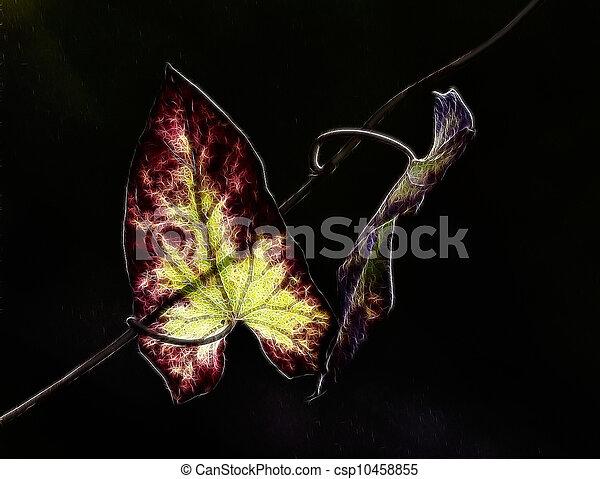 leaves and light,leaf - csp10458855
