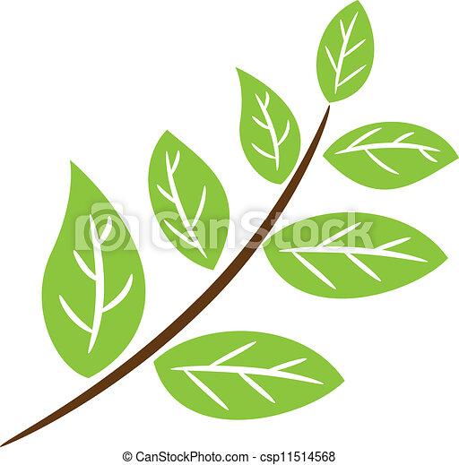 leaves - csp11514568