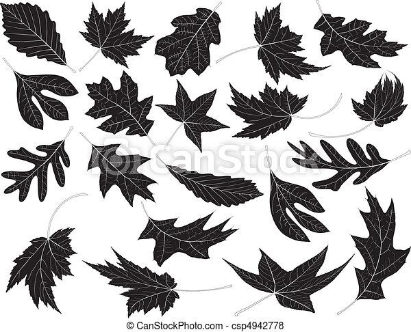 Leaves - csp4942778