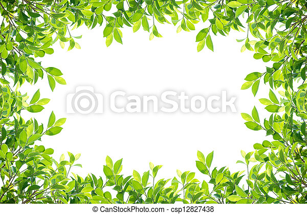 Leaves frame isolated - csp12827438