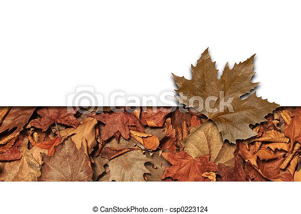 Leaves frame - csp0223124