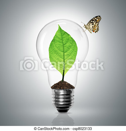 Leaves grow in a light bulb - csp8023133