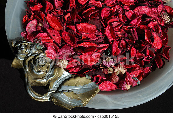 Leaves in a vase 1 - csp0015155