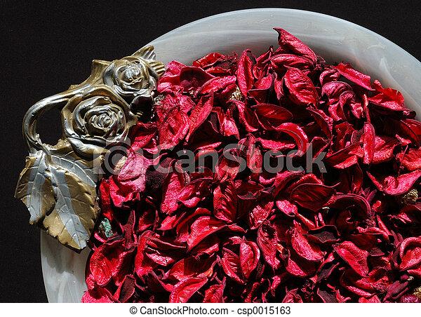 Leaves in a vase 2 - csp0015163