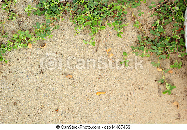 Leaves on the cement floor. - csp14487453