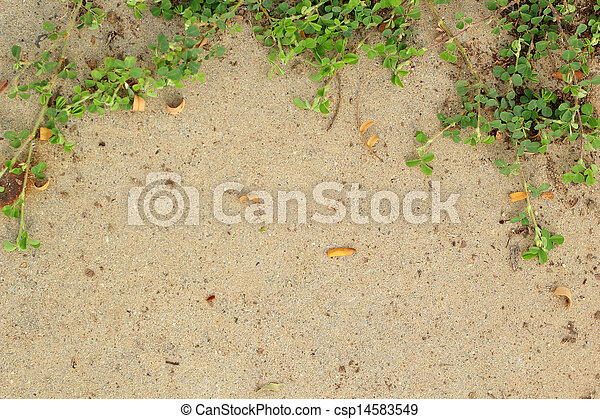 Leaves on the cement floor. - csp14583549