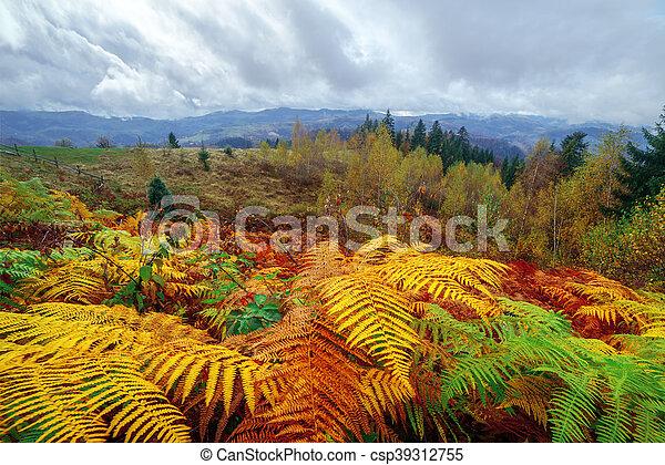 leaves - csp39312755