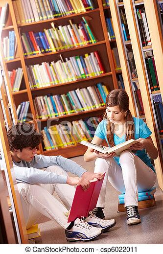 lectura, biblioteca - csp6022011