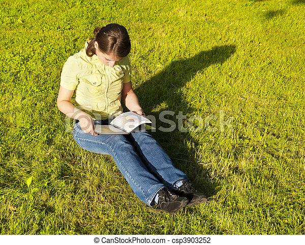 Una chica leyendo un libro - csp3903252