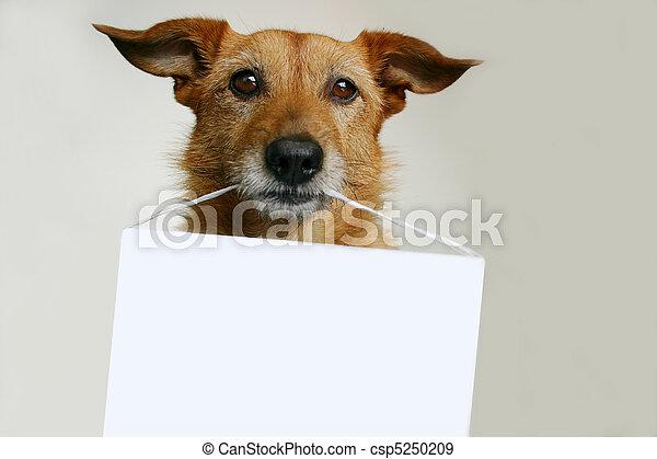 leeg, dog, meldingsbord - csp5250209