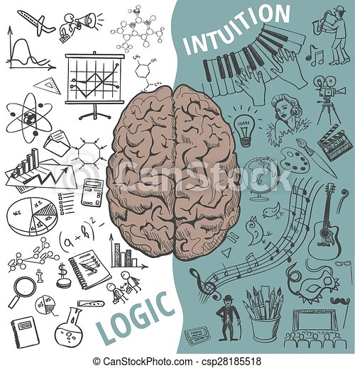 Left and right brain functions,human concept. Creative ...