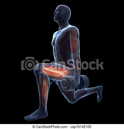 Leg workout. 3d rendered illustration of a man doing a leg ...