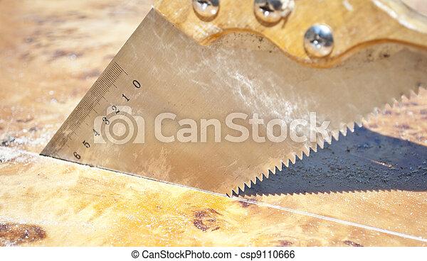 legna taglio, sega, asse - csp9110666