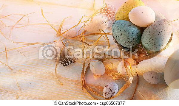 legno, uova, pasqua, sfondo bianco - csp66567377