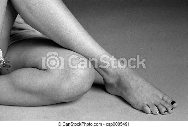 Legs - csp0005491