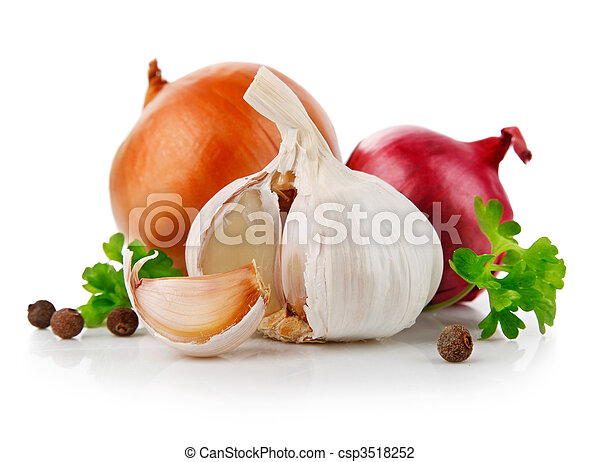legumes, alho, salsa, cebola, tempero - csp3518252