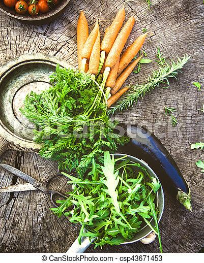 legumes, madeira - csp43671453