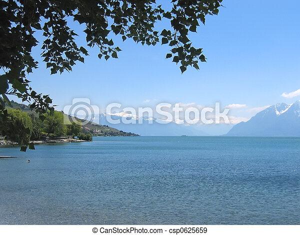 leman, 湖, 海岸, 木, 下に, スイス - csp0625659
