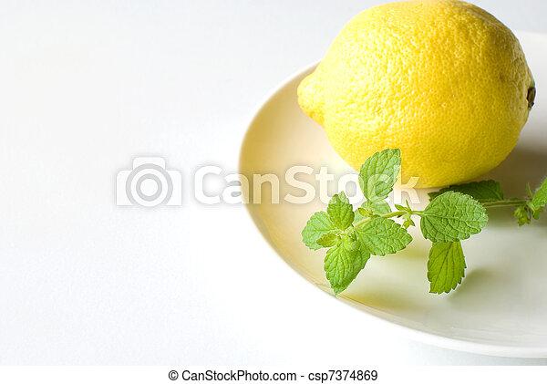 Lemon balm and Lemon - csp7374869